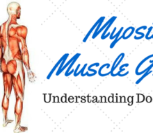 Myositis Muscle Groups: Understanding doctor-speak