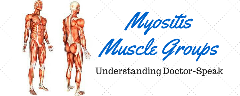 Myositis Muscle Groups