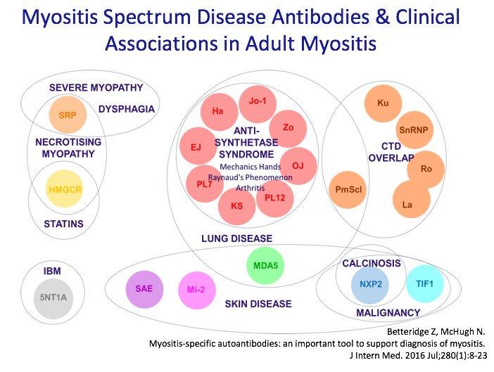 Myositis Antibodies