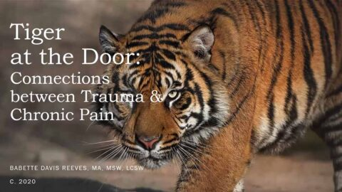 The Tiger at the Door: The Relationship between Trauma and Chronic Pain with Babette Reeves, MA, MSW, LCSW